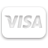 VISA Credit Cards Icon